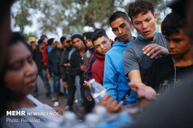 بیش از 5 هزار متقاضی پناهندگی از آلمان بازگردانده شدند