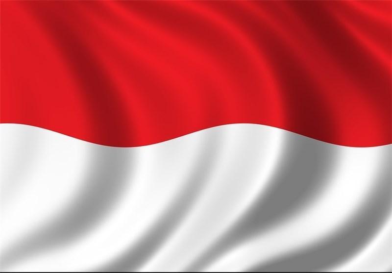 پیچیده تر شدن تصمیم گیری در اوپک با عضویت دوباره اندونزی