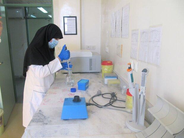 قیمت کیت آزمایشگاهی در وزارت بهداشت متولی ندارد