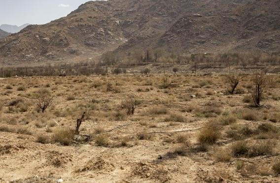 بارش های سال جاری 42 درصد کمتر از میانه 30 سال اخیر، گرمای 50 درجه در اهواز